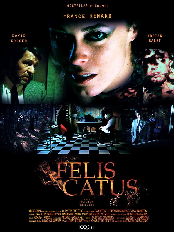 Felis Catus affiche
