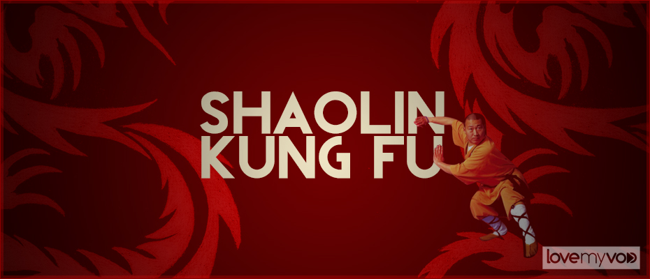 Shaolin Kung Fu affiche