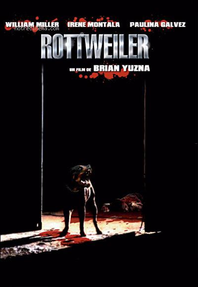 affiche cinema Rottweiler