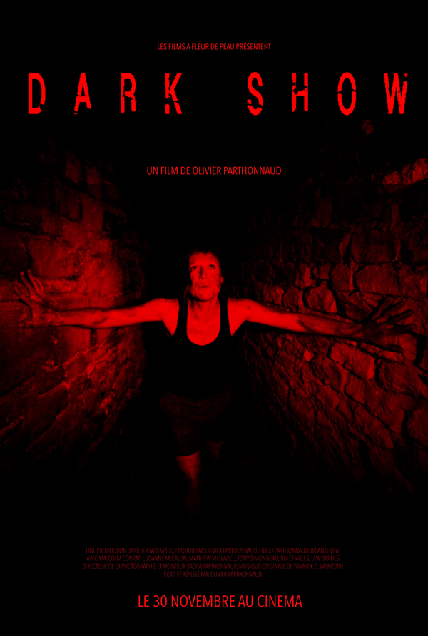 affiche cinema DARK SHOW