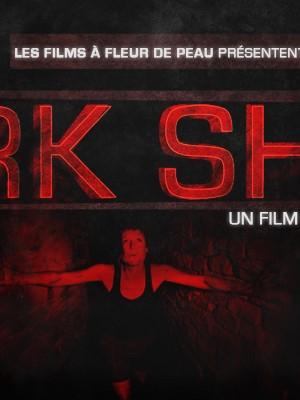 petite affiche dark show